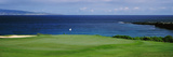 Golf Course at the Oceanside  Kapalua Golf Course  Maui  Hawaii  USA