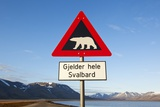 Polar Bear Warning Sign  Svalbard  Norway