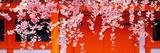 Heian-Jingu Kyoto Japan