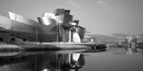 Reflection of a Museum on Water  Guggenheim Musuem  Bilbao  Spain