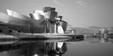 Reflection of a Museum on Water  Guggenheim Musuem  Bilbao  Spain