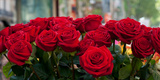 Close-Up of Red Roses in a Bouquet During Sant Jordi Festival  Barcelona  Catalonia  Spain