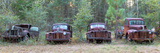 Old Rusty Cars and Trucks on Route 319  Crawfordville  Wakulla County  Florida  USA