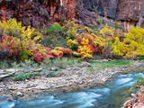 Virgin River and Rock Face at Big Bend  Zion National Park  Springdale  Utah  USA