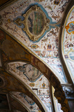 Vaulted Ceiling of the Antiquarium  Residenz  Munich  Bavaria  Germany