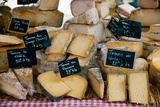 Cheese for Sale at a Market Stall  Lourmarin  Vaucluse  Provence-Alpes-Cote D'Azur  France