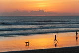 Silhouette of People and Dog Walking on the Beach  Seminyak  Kuta  Bali  Indonesia