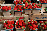 Strawberries for Sale at Weekly Market  Arles  Bouches-Du-Rhone  Provence-Alpes-Cote D'Azur  France