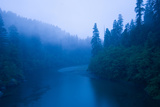 River Passing Through a Forest in the Rainy Morning  Smith River