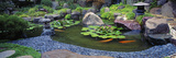 Lotus Blossoms  Japanese Garden  University of California  Los Angeles  California  USA