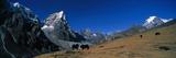 Sagamartha National Park Nepal