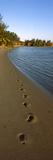 Footprints on the Beach  Pomene  Mozambique