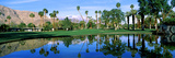 Reflection of Trees on Water  Thunderbird Country Club  Rancho Mirage  Riverside County