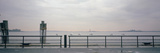 Seagulls Perching on a Railing at the Riverside  New Jersey  USA