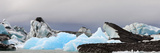 Icebergs and Volcanic Ash  Jokulsarlon Lagoon  Iceland