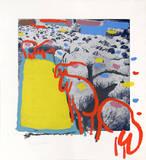 Sheep Portfolio 1