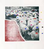 Sheep Portfolio 5