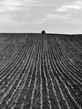 A Newly Ploughed Field Near Aylesbury  Buckinghamshire