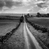 A Long Straight Country Road Near Stamfordham  Northumberland