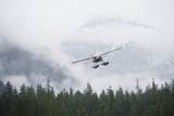 Floatplane Above Rainforest in Misty Fjords National Monument
