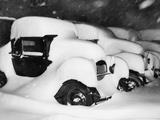Cars Buried by Heavy Snowfall