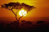 Sunrise on Masai Mara National Reserve