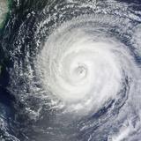 Typhoon Muifa in the Philippine Sea