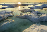 Melting Sea Ice at Sunset Hudson Bay  Canada