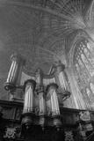 King's College Chapel  Cambridge  Interior View