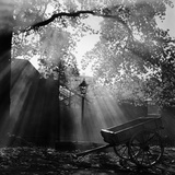 Diffused Light Filtering Down onto an Empty Cart Standing in Front of Silhouetted Buildings