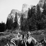Tourist Photo from Horse-Drawn Wagon in Yosemite Valley  Ca 1900