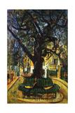 The Tree in Vence  L'Arbre de Vence  1929
