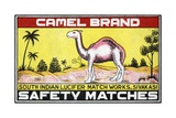 Camel Brand Indian Matchbox Label
