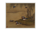 Mandarin Ducks Playing on a Willow Bank from an Album of Bird Paintings