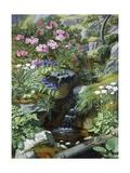 Alpine Flowers by a Stream