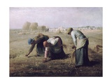 Des Glaneuses (The Gleaners)
