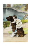 Color Print Postcard Showing Girl Hugging a Bernese Mountain Dog