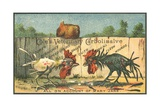 Cole's Veterinary Carbolisalve Trade Card