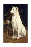 A Borzoi by a Chair