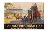 Holland British India Line Poster