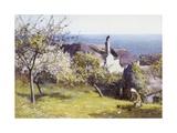 Springtime  Devon