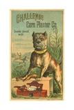 Challenge Corn Planter Co Trade Card with Bulldog