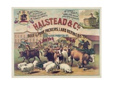 Halstead and Co Beef and Pork Packers  Lard Refiners and Co