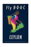 Fly Boac Ceylon Travel Poster