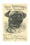 Prof Horsford's Baking Powder Trade Card