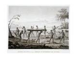 New Holland  Port Jackson: Burial Ceremony of the Aborigines Book Illustration
