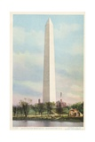 Washington Monument  Washington  DC Postcard