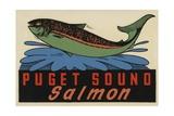 Puget Sound Salmon Travel Decal