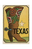 Texas Travel Decal