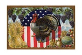 Thanksgiving Postcard with Turkey and Stars and Stripes Motif